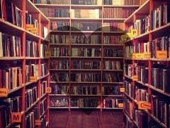Заочный творческий фотоконкурс «#книгоманиЯ»
